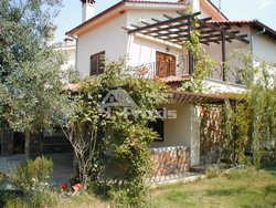 apartment for Rent - Sithonia